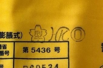 81rGvgjR6VL._SL1500_.jpg